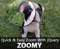 jquery zoom image