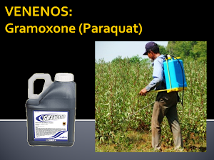 VENENOS: GRAMOXONE (Paraquat)
