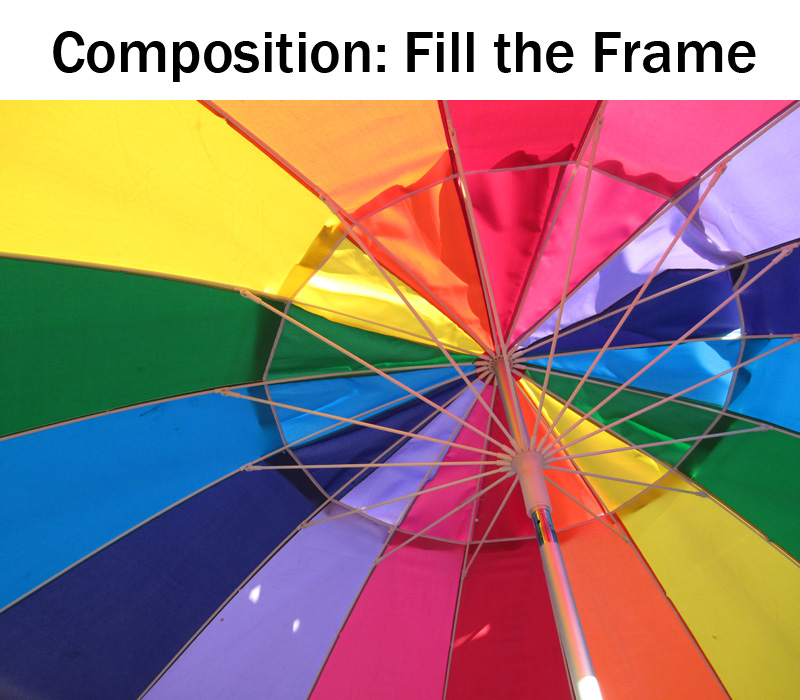 Composition: Fill the Frame | Boost Your Photography