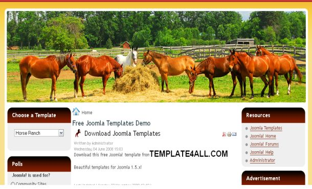 Free Horse Brown Orange Joomla Template