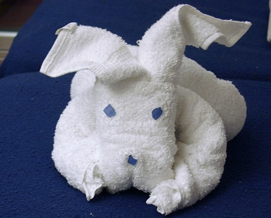 towel animal origami