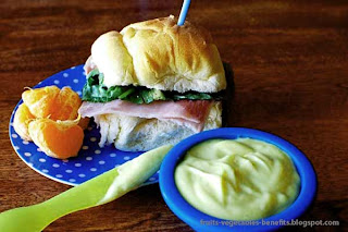 health_benefits_of_mayonnaise_fruits-vegetables-benefits.blogspot.com(7)