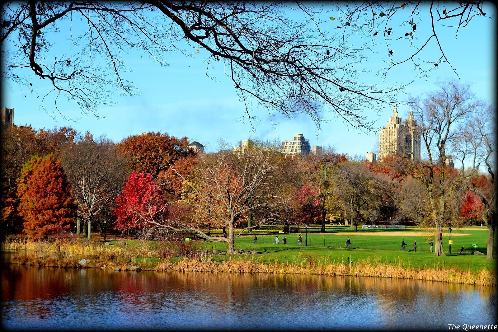 les jolies couleurs d 39 automne de central park mybigapplecitymybigapplecity. Black Bedroom Furniture Sets. Home Design Ideas
