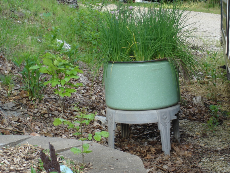 Washing Tubs From The Past ~ Moving on to the past sunday in flower garden