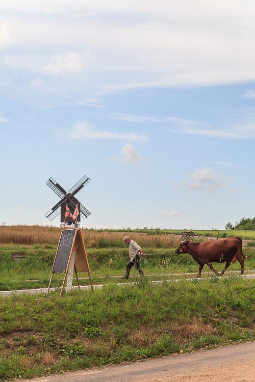 Amalie loves Denmark - Ferienurlaub auf Bornholm, Melsted