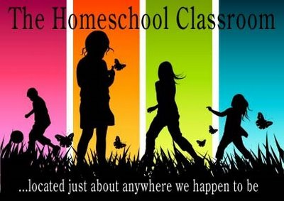 Apa Yang Perlu Ibu Tahu Tentang Homeschooling???