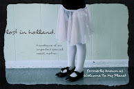 Follow Lost In Holland On Facebook