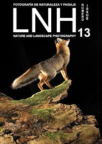 LNH Nº 13