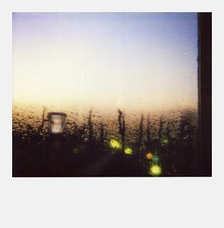 Polaroid SX70 - Paysage flottant