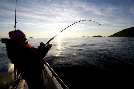 Mẹo câu cá biển cho dân câu cá