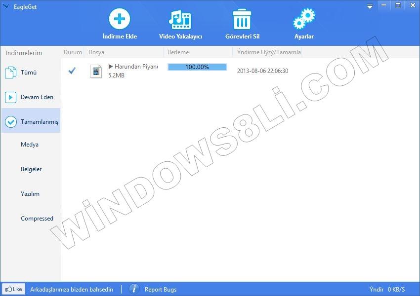 İnternet Download Manager'a Alternatif EagleGet - Windows8li ...