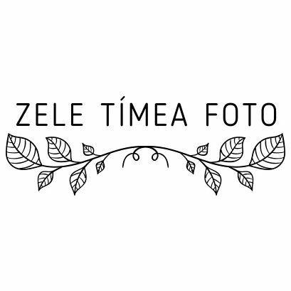 Z T M Foto