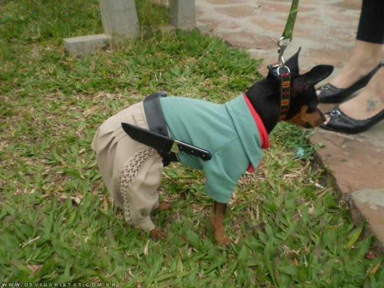 AAAAAEEEEE NIVER COMUNITARIO GALERA 06/10/12 PORCO NO ROLETE - Página 14 Cachorro-gaucho
