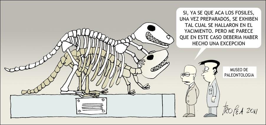 Universo a la vista 2: Paleontólogos escrupulosos