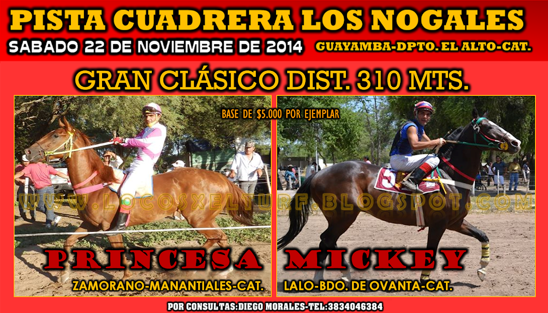 22-11-14-CLÁS-HIP. LOS NOGALES