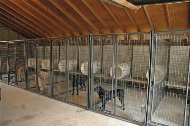 Designs For Dog Breeding Kennels