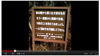 富士山 神秘樹海:富士山腳神秘樹海 藏上百火山洞穴