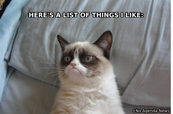 ThingsILikeGrumpyCatMeme