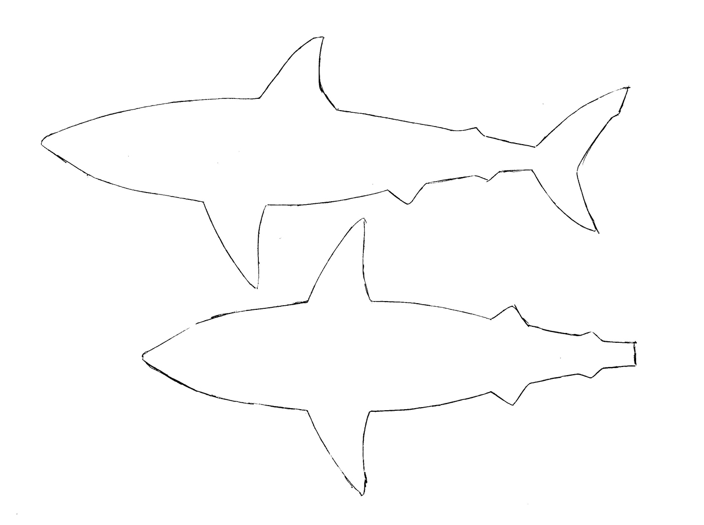 Shark Cut Out