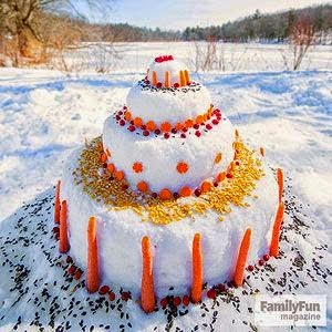 Cake made of snow, carrots and birdseed - Posted by Patricia Stimac and Kent Buttars, Seattle Wedding Officiants