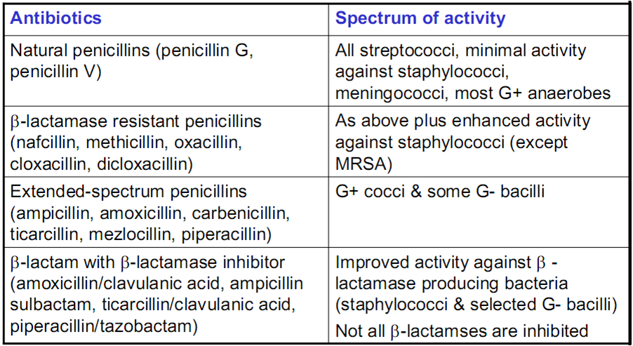 augmentin prescribed use