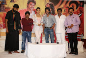 Rough movie audio success meet-thumbnail-16