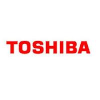PT Toshiba