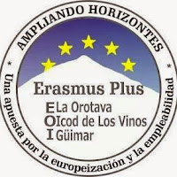 Logo del Consorcio de las 3 EOI participantes