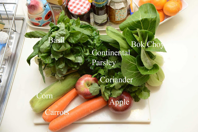 cavy diet/guinea pig diet