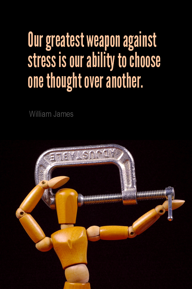 visual quote - image quotation for CALMNESS - The greatest weapon against stress is our ability to choose one thought over another. - William James
