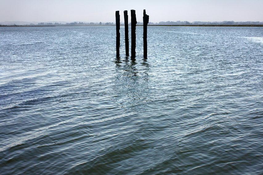 Apontamento na ria de Ovar: Quatro barrotes juntos, na vertical e no meio da água, provavelmente para amarrar embarcações. Muito ao longe a margem e apenas uma pequena faixa de céu, limpo.