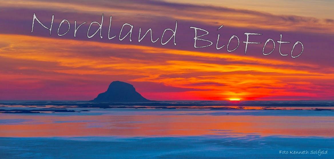 Nordland Biofoto