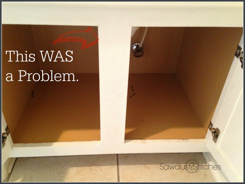 even when using bins the usable space was limited due to the plumbing hardware and that stupid divider