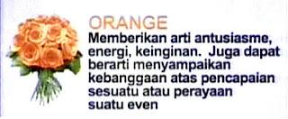 Mawar Orange
