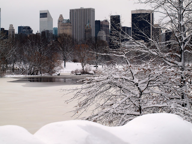 Nemo blankets Central Park in Snow with view towards NY Skyline