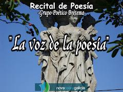 REPORTAXE FOTOGRÁFICA RECITAL NOVACAIXAGALICIA 2011