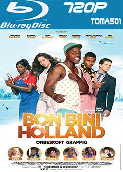 Bon Bini Holland (2015) BDRip m720p