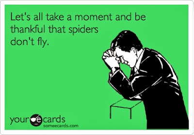 Let's all take a moment to be thankful that spiders don't fly.
