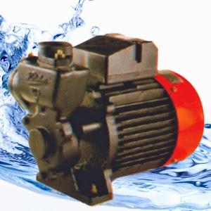 Kirloskar Mini 50 S Monoblock Pumps Online in India - Pumpkart.com