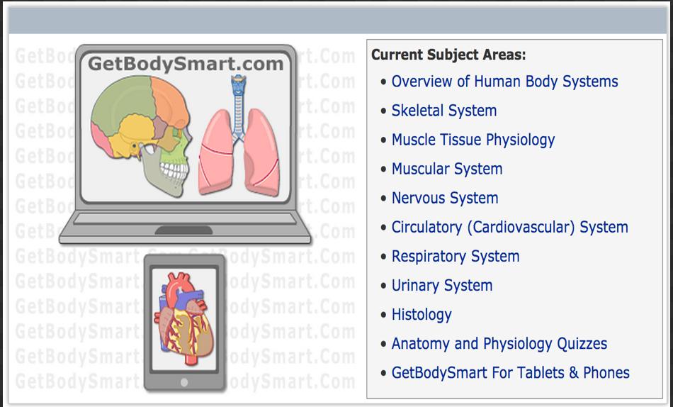 Anatomy Physiology MCQ Human Body Quiz by OpenStax 7029117 ...