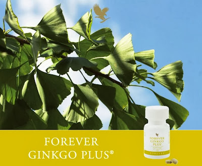 Art 73 - FOREVER GINKGO PLUS - CC 0,125