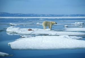 Globālā Sasilšana
