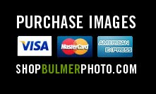Purchase Images