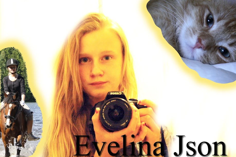 Evelina Json