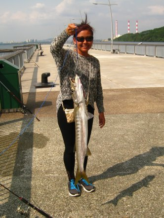 Yellowtail Barracuda [Sphyraena Flavicauda] also know as Saw Kun 沙君 [Hokkien] or Ikan Kacang [malay] weighing 3kg plus caught by Joanne at Woodland Jetty on 23rd August 2013 using live Five-spot Herring or Assam fish (local), Selangat (malay) on float.