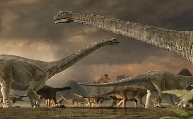 10 haiwan terbesar di dunia