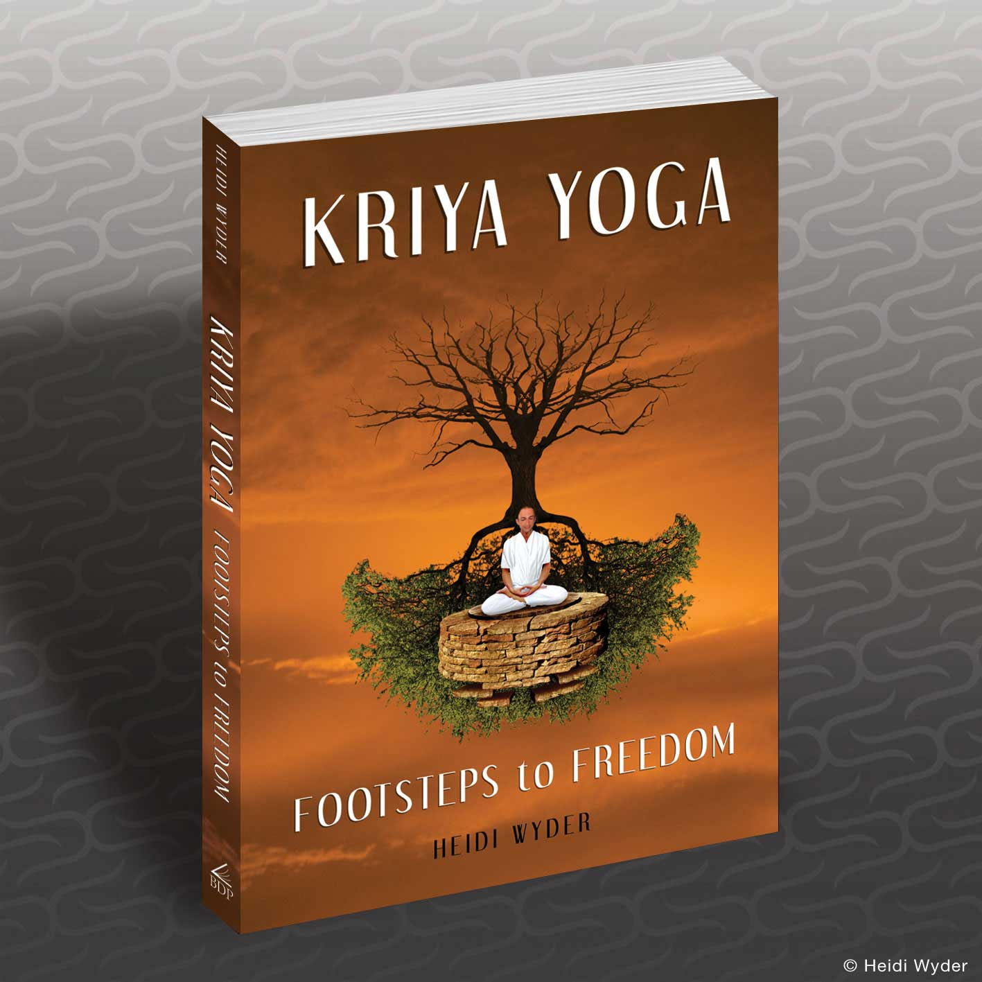 kriya yoga Divya babaji sushumna kriyayoga is a simplified version of traditional kriya yoga which is a very powerful and ancient meditation technique.