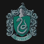 Slytherin Pride!