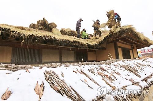 Campesinos coreanos cambiando el tejado de paja de una casa tradicional