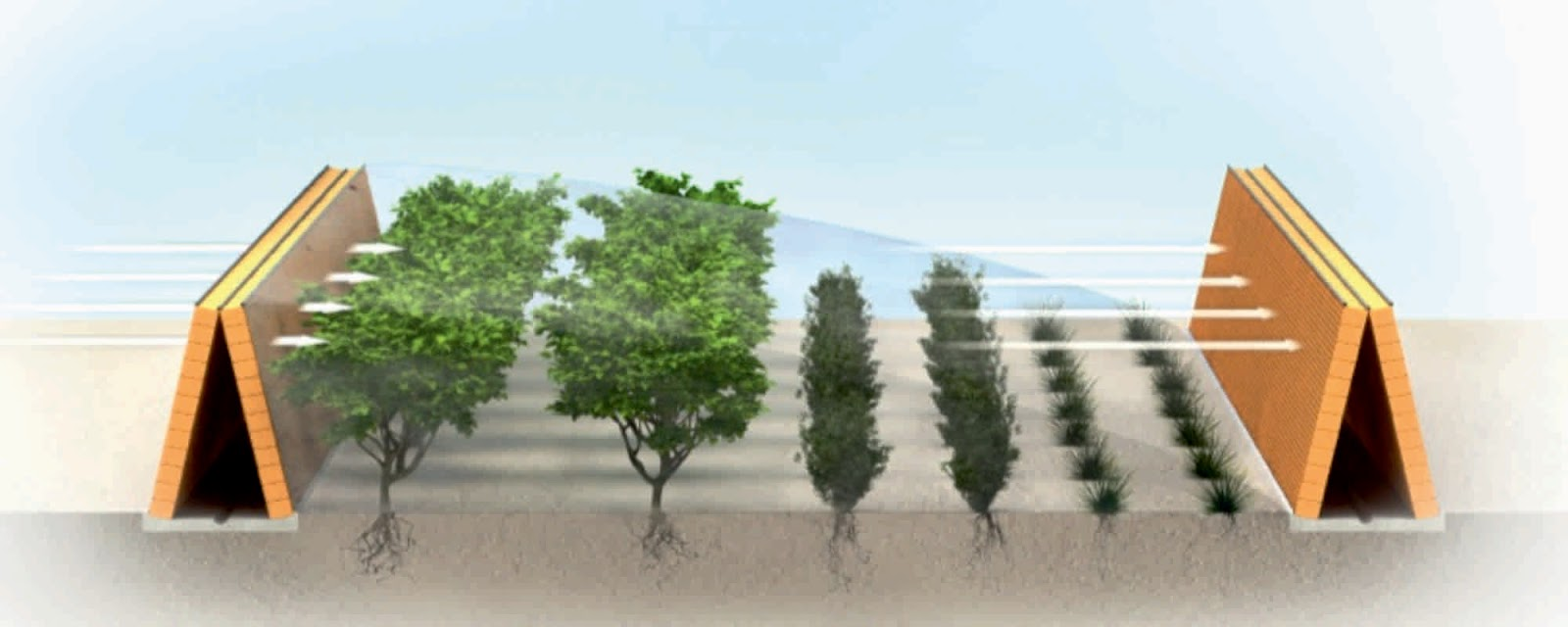Sahara Forest Project A As Architecture